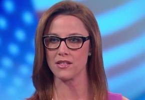 S.E. Cupp: Bloomberg 'Worst Face for Gun Control,' NRA High-Fiving